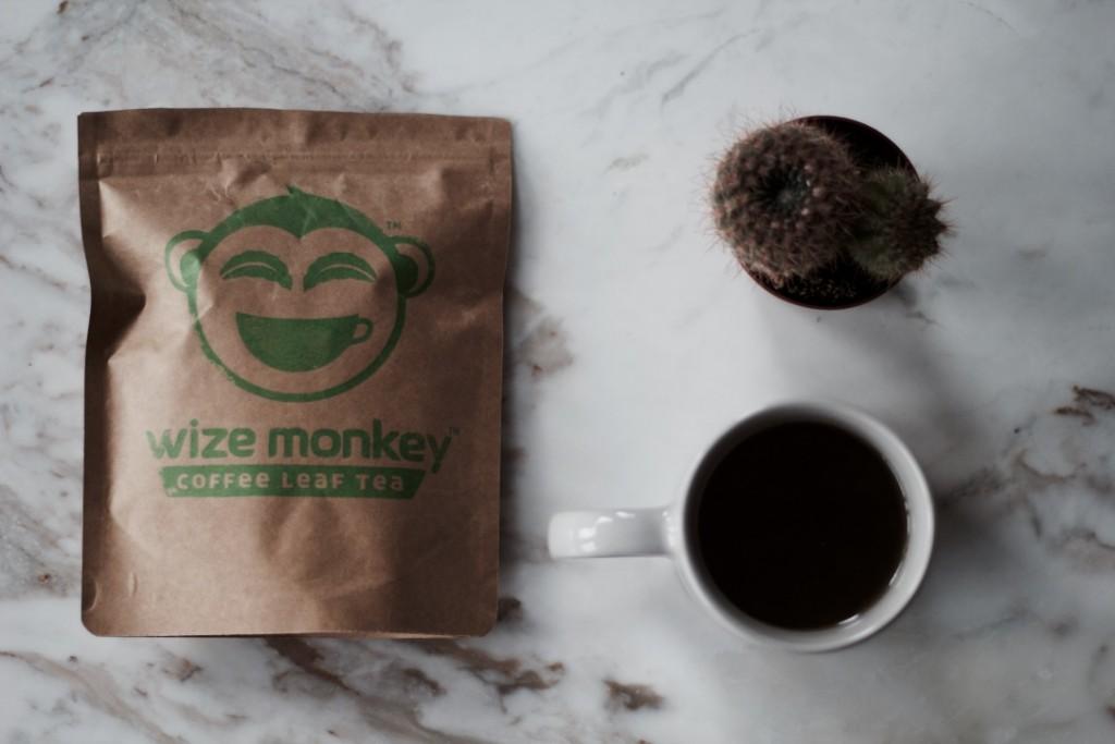 wize monkey I greener living